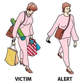 Victim Vs Alert